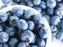 Blueberry. Fresh bluberries from local market on white background. Blueberries contain anthocyanins,  and various phytochemicals, which possibly have a role in Stock Images