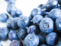 Blueberry Royalty Free Stock Photos