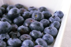 Blueberry. Many blueberry in the white bowl Stock Images