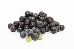 Blueberry. Beutiful fresh blueberry with leaves on white background Royalty Free Stock Images