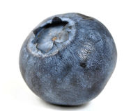 Blueberry. On a white background Stock Images