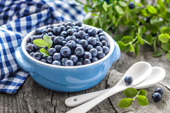 Free Blueberry Stock Photography - 32718422