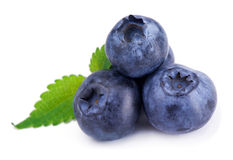 Free Blueberry Royalty Free Stock Photos - 37194768