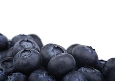 Blueberry. On a white background Stock Photo