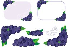 Blueberry. Background of the blueberries for the design stock illustration