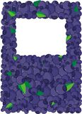 Blueberry. Frame to design,to image vector illustration