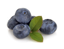 Free Blueberry And Green Leaves Stock Photography - 37849482