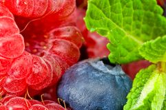 Free Blueberry And Raspberry With Mint Leaves Stock Photo - 8367670