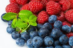 Free Blueberry And Rasperry With Mint Leaves Stock Image - 8367551