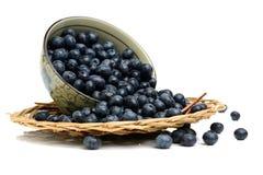 Blueberry antioxidant superfood. Isolated on white background Royalty Free Stock Images