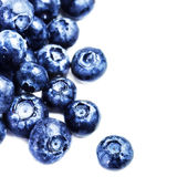 Blueberry antioxidant superfood isolated on white background  m Stock Image