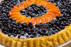 Blueberry and apricots Tart with fresh fruits Stock Image