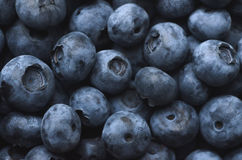 Blueberry background. Fresh juicy blueberry texture, natural background Stock Photography