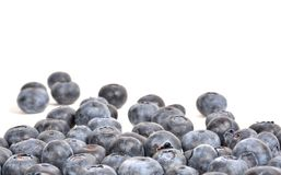 Blueberry background. Blueberry isoalted on white spilling nto background, suitable copy space Royalty Free Stock Photography