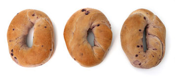 Blueberry Bagels Royalty Free Stock Image
