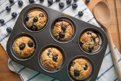 Blueberry Banana Muffins Stock Photos