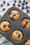 Blueberry Banana Muffins Royalty Free Stock Photography