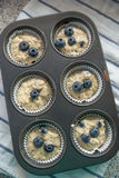 Blueberry Banana Muffins Royalty Free Stock Image