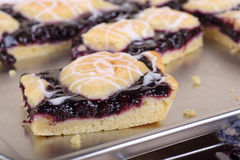 Blueberry Bar Closeup Royalty Free Stock Images