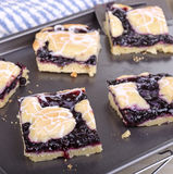 Blueberry Bar Dessert Stock Image