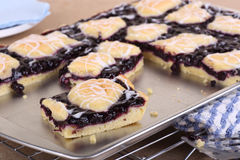 Blueberry Bars Stock Photography