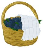 Blueberry basket. Juicy blueberries in the basket - illustration. Background / design element vector illustration