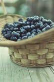 Blueberry basket Stock Image