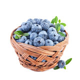 Blueberry in Basket Isolated on White Royalty Free Stock Image