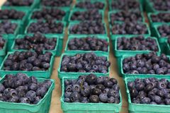 Blueberry Baskets Royalty Free Stock Image