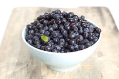 Blueberry in bawl Stock Image