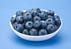 Blueberry berry closeup Stock Image