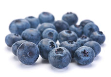 Blueberry berry closeup Stock Photography
