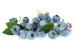 Blueberry  closeup on white Royalty Free Stock Images