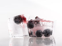 Blueberry berry ice Royalty Free Stock Images