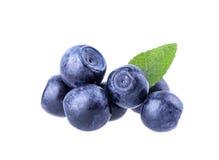 Blueberry berry Stock Photos