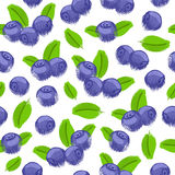 Blueberry bilberry painted vector seamless pattern. Stock Photography