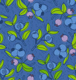 Blueberry and bilberry pattern Stock Images