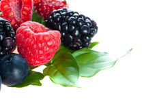 Blueberry, blackberry, raspberry. Stock Photos