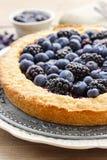 Blueberry and blackberry tart Stock Image