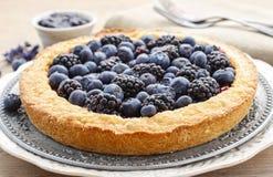 Blueberry and blackberry tart Stock Photos