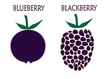 Blueberry and blackberry Stock Photography