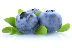Blueberry blueberries berry berries isolated on white Royalty Free Stock Photos
