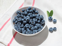 Blueberry 8. Blueberries in plate on the tablecloth Stock Photography