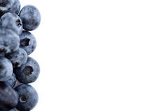 Blueberry border Stock Photos