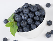 Blueberry in the bowl Stock Photography