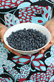 Blueberry in bowl Stock Photo