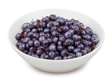 Blueberry bowl Stock Photography