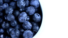 Blueberry stock video footage