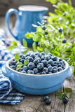 Blueberry Royalty Free Stock Photos