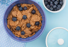 Blueberry And Bran Breakfast Stock Photos